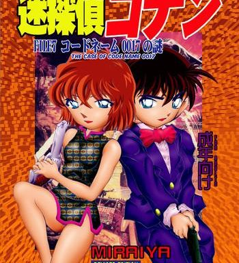 bumbling detective conan file 7 the case of code name 0017 cover