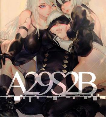 a29s2b cover 1