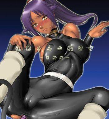 nagaredamaya bang you shindou yoruneko san no shitsuke kata kubiwa hen bleach digital cover
