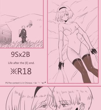 ws 9sx2b life after the e end nier automata chinese cover