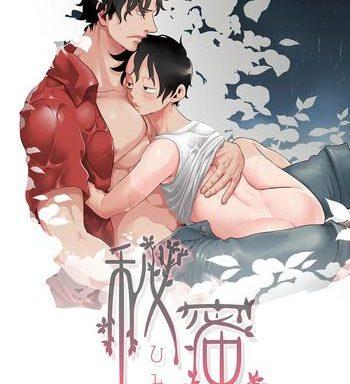 himitsu secret cover